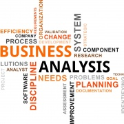 business analyst themes